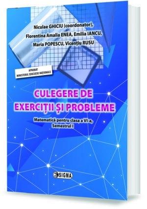 CULEGERE DE EXERCIȚII ȘI PROBLEME. Matematică pentru clasa a VI-a, Semestrul I