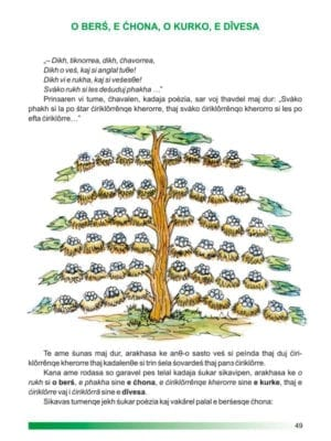 limba-si-literatura-rromani-_cls.-a-iv-a_-49-534