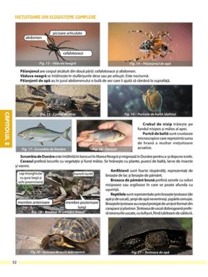 biologie-clasa-a-5-a-pag52-1257