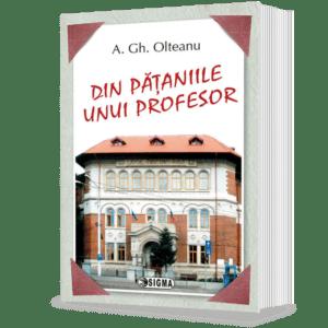 coperta-din-pataniile-unui-profesor-1142-1