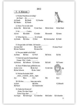 das-kanguru-wettspiel-deutsch-v-viii-klassen-51-1087-1