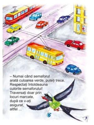 mijloace-de-transport.-carte-uriasa-5-736
