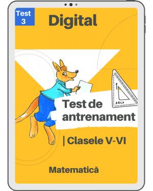 Test 3 de antrenament – Clasele V – VI – Mate