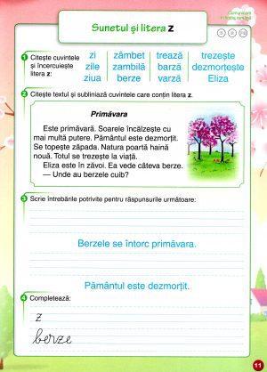cemirosaumeseriile (2)
